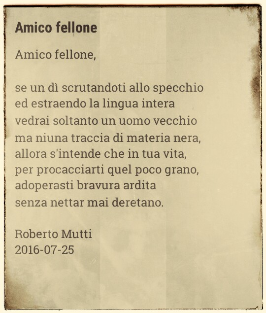 Amico Fellone by RM